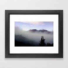 Lone Pine - Tasmania Framed Art Print