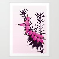'Heather' Art Print