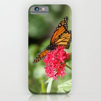 iPhone & iPod Case featuring Papillon III by Shutterbee Photography