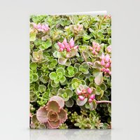 The Fabulous Succulent, Succulent Print, Nature Photography, Pink and Green Wall Art, Garden Print Stationery Cards