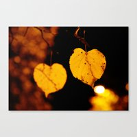 Side by side...last night Canvas Print
