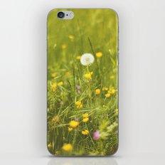 Make a wish iPhone & iPod Skin