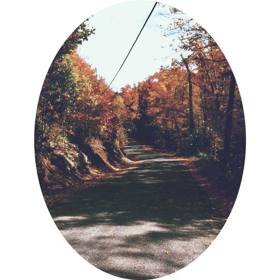 Kenisis lake fall road Art Print