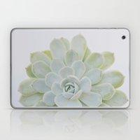 succulent 04 Laptop & iPad Skin