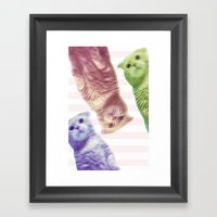3-D Cats Framed Art Print