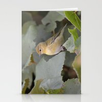 A Female Yellow Warbler Stationery Cards