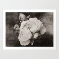 Mother and Babies in Sepia Art Print