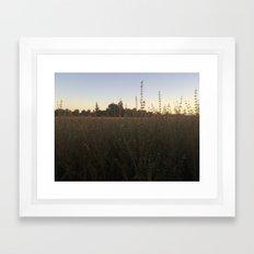 Field Day  Framed Art Print