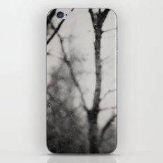 the silence ... iPhone & iPod Skin