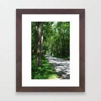 Sunny Path Framed Art Print