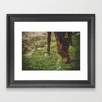 Long Brown Eyelashes Framed Art Print
