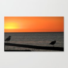 Sunset with seagulls Canvas Print