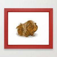 Grumpy Old Guinea Pig  Framed Art Print
