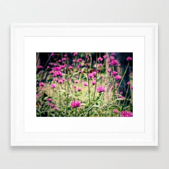 Pink Thistle Flowers in Field Framed Art Print