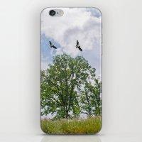The buzzard tree iPhone & iPod Skin