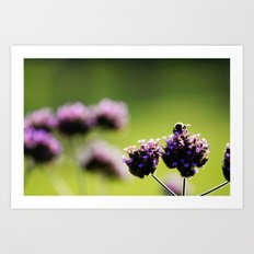 holding on to summer Art Print