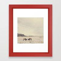 Sparring Elk In Wyoming … Framed Art Print