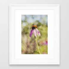 august 1 Framed Art Print