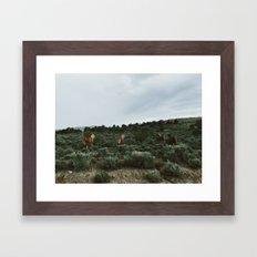 Nevada Horses Framed Art Print