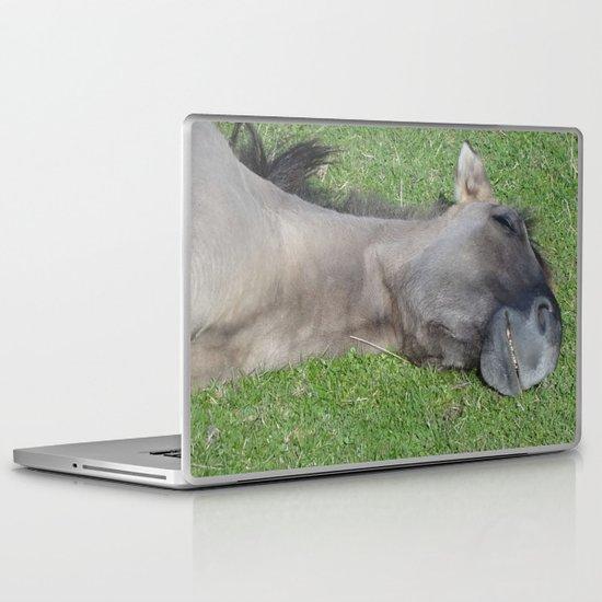 Grinning Horse Laptop & iPad Skin