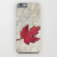 iPhone & iPod Case featuring Red Leaf on Concrete by Amything Goes