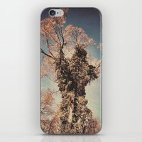 Tree 4 iPhone & iPod Skin