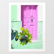 Colorful Door And Flower Art Print
