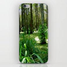 Bayou iPhone & iPod Skin