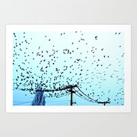 After Hours At The Wire Art Print
