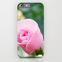 iPhone & iPod Case featuring Rose by Amy K. Nichols