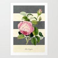 Botanical Stripes II Gra… Art Print