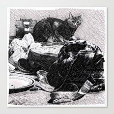 Baxter  |  The Cat That Lives With Me Canvas Print