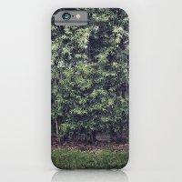 Red Flowers. iPhone 6 Slim Case