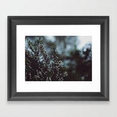 like winter Framed Art Print
