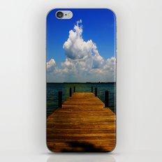 FL iPhone & iPod Skin
