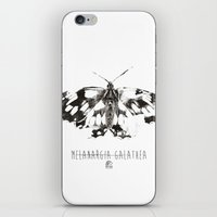 Butter flies - Melanargia_Galathea iPhone & iPod Skin