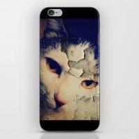 Broken Cat iPhone & iPod Skin