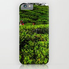 On the tea plantation iPhone 6 Slim Case