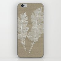 white feathers iPhone & iPod Skin