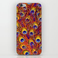 Peacock Feathers Colorful Pattern  iPhone & iPod Skin