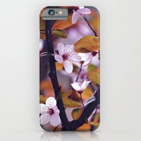 iPhone & iPod Case featuring Cherry Blossom 2 by Bottle of Jo