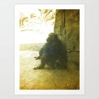 The Thinking Chimp.  Art Print