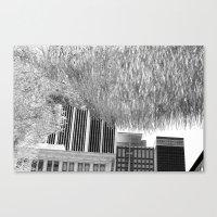 silver cloud 5 Canvas Print