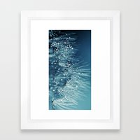 Silence Of Light Framed Art Print