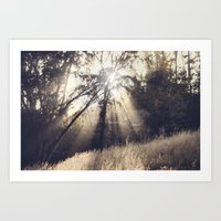 collapse the light into earth Art Print