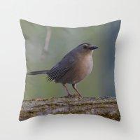 Gray Catbird near Sunrise Throw Pillow