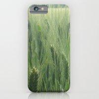 Spring wheat iPhone 6 Slim Case