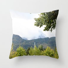 Fountain in the Mountains Throw Pillow