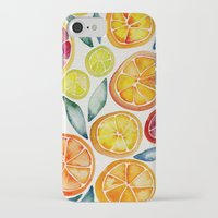 watercolor iPhone & iPod Cases featuring Sliced Citrus Watercolor by Cat Coquillette