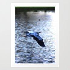 Flying Heron speed up Art Print